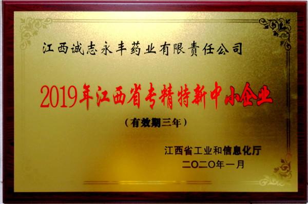 2019年江西专精特新中小企业